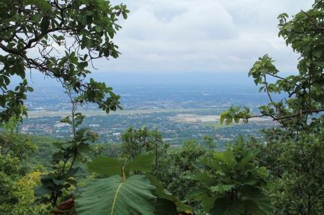 Views 1.