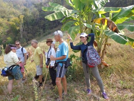 DSC05576 Under the shade of the banana tree_resize