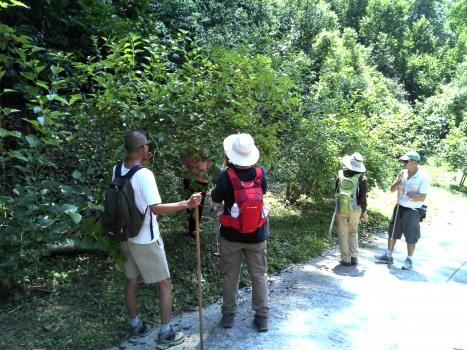 Fruit picking hikers