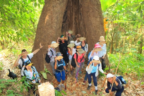 "Chiang Mai Hiking ""secret group"""