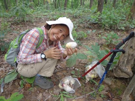 DSC06161 Mushroom gatherer
