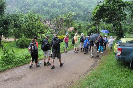 Light rain at start of hike