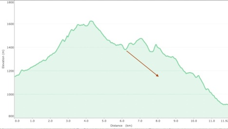 Pang Hai loop graph